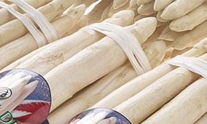 Asparago Bianco di Badoere IGP