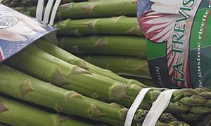 Dettaglio Asparago Verde di Badoere IGP