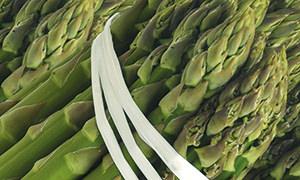 Dettaglio dell'Aparago verde