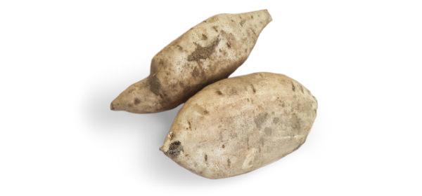 Patata americana di Zero Branco