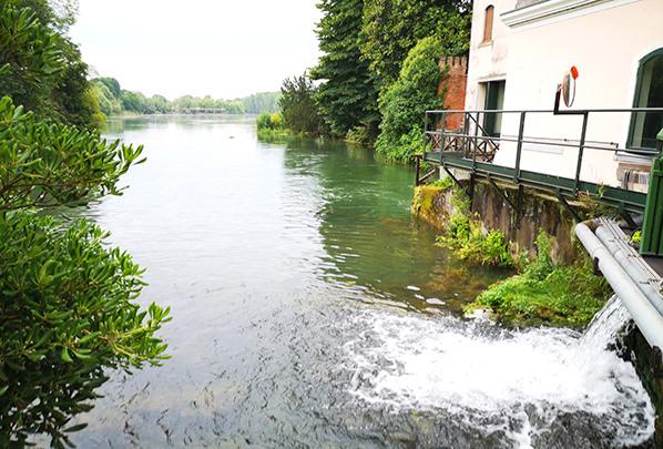 Cascata sul fiume Sile a Quinto di Treviso - Radicchio di Treviso